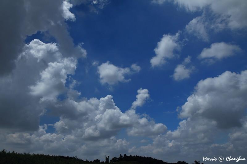 追逐那片雲 (50)