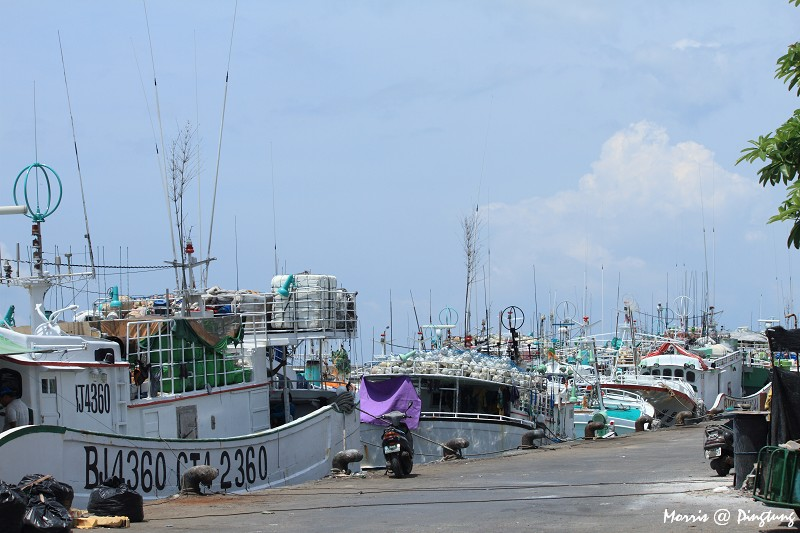 漫遊東港漁港&漁市 (17)