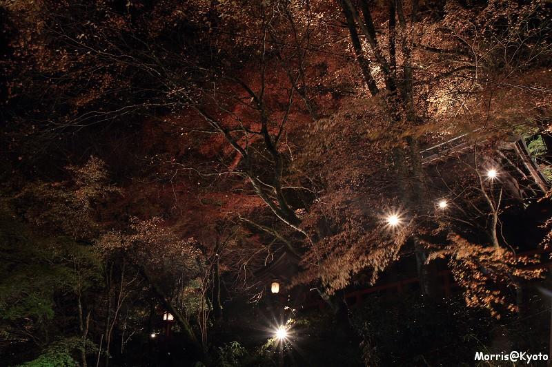 貴船燈籠祭 (12)