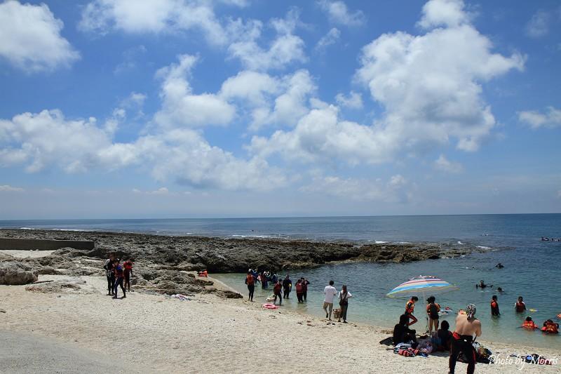 厚石群礁 (10)