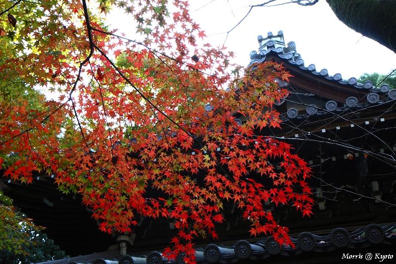 長樂寺 (2)