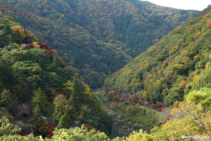 嵐山 (25)