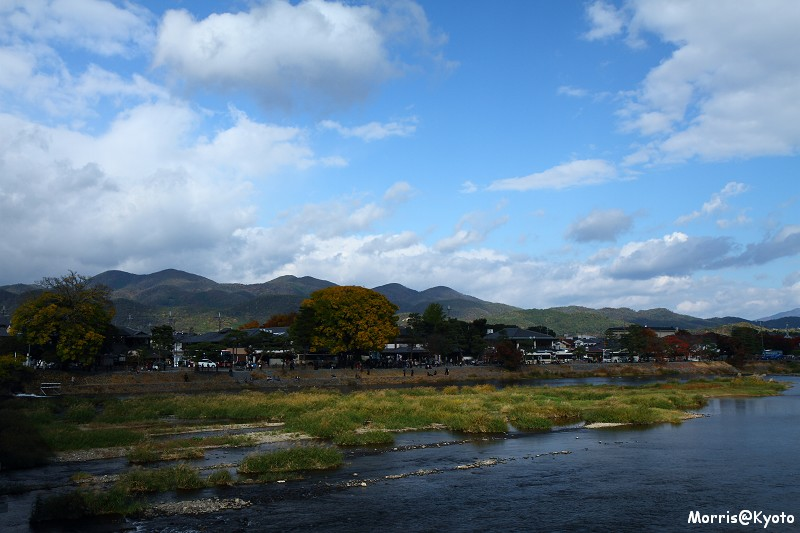 嵐山 (49)