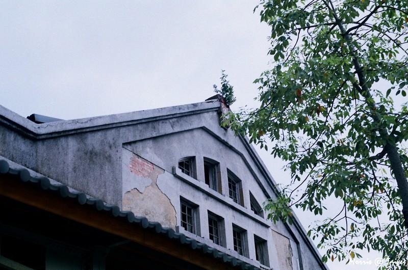 華山藝文特區 (26)