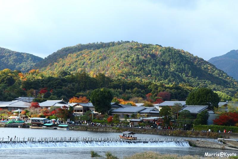嵐山 (50)