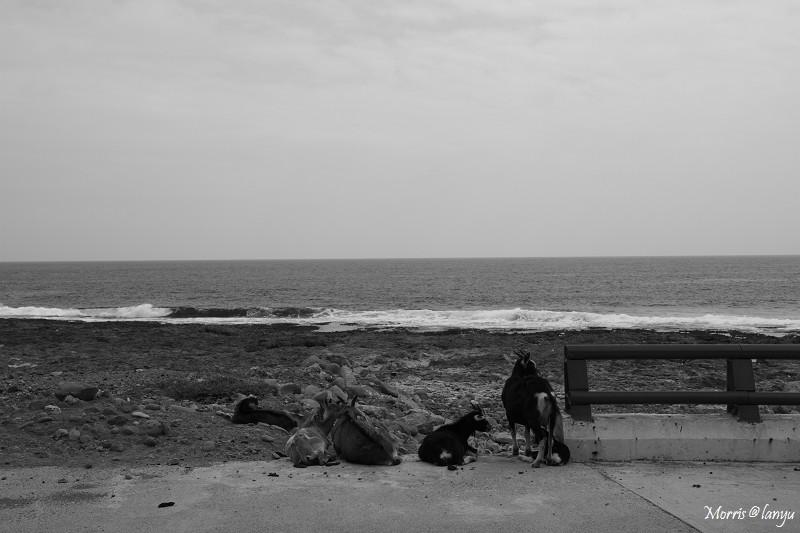 散步‧蘭嶼 (65)