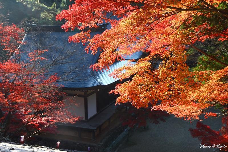 D2 神護寺 (2)