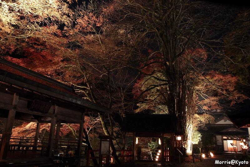 貴船燈籠祭 (15)