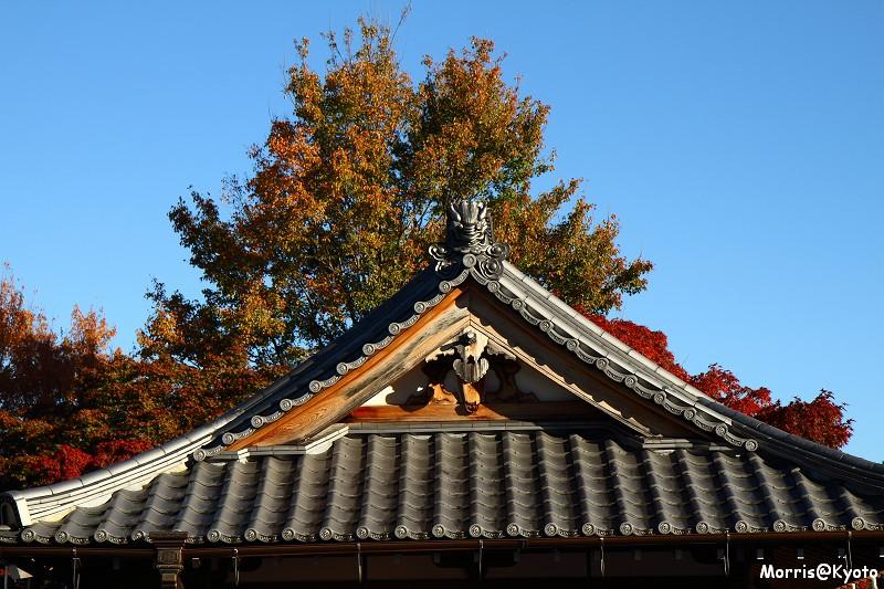 東福寺 (11)