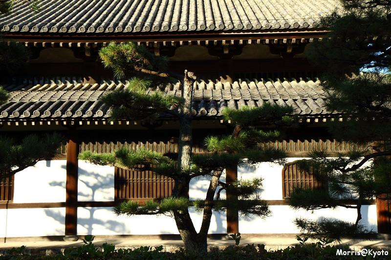 東福寺 (8)