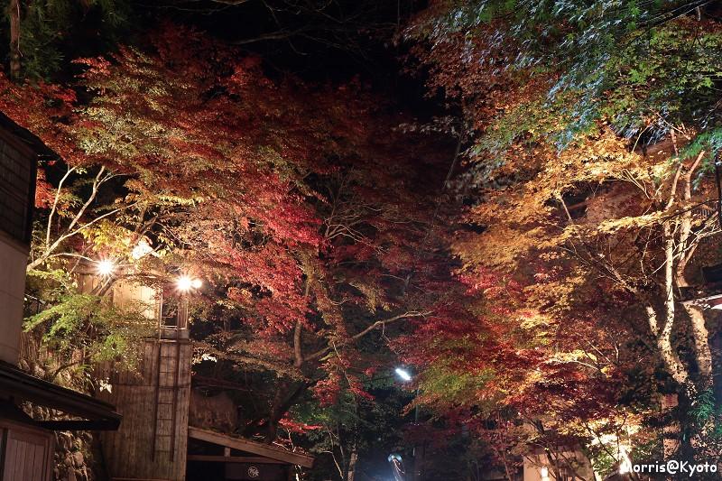 貴船燈籠祭 (28)