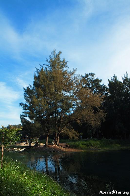 台東森林公園 (13)