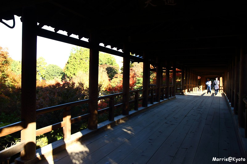 東福寺 (13)