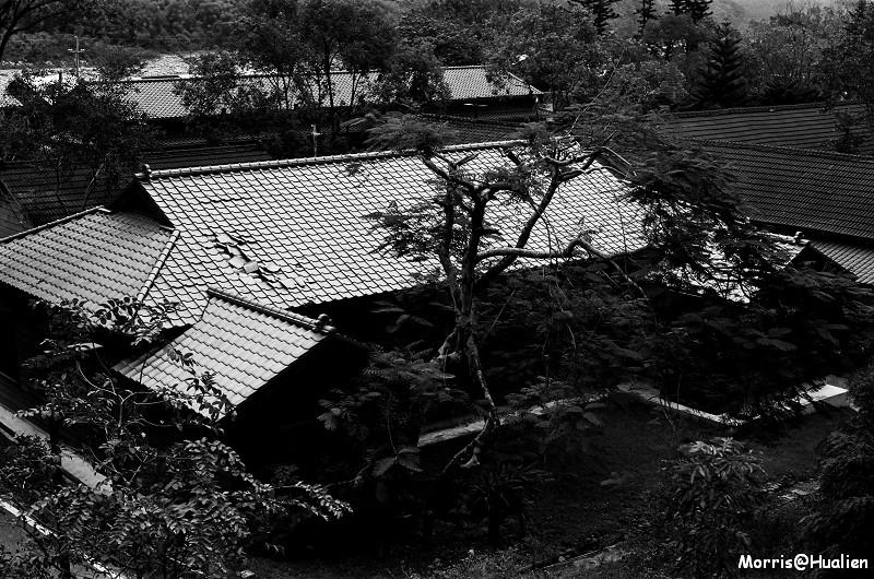 林田山黑白卷
