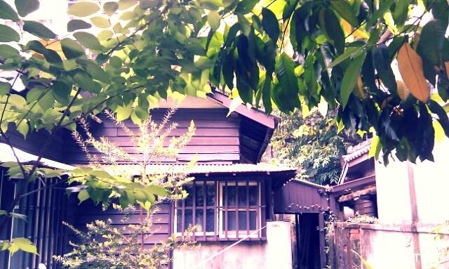 錦安日式宿舍聚落 (3)