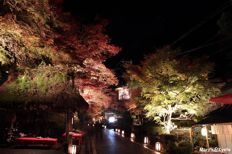 貴船燈籠祭 (29)