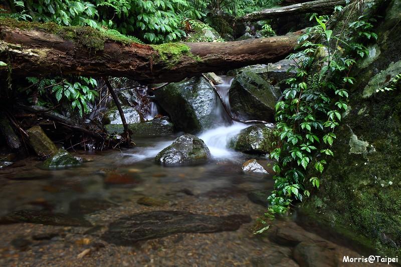 雲森瀑布 (7)