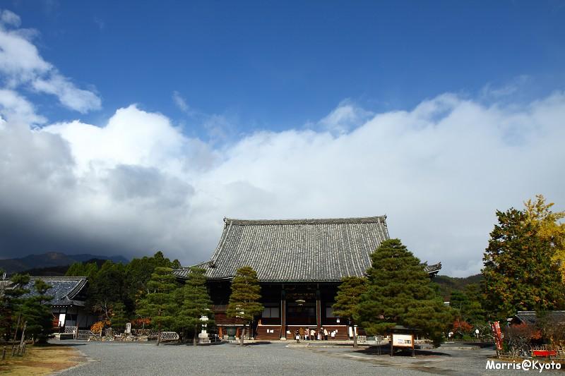 嵐山 (3)