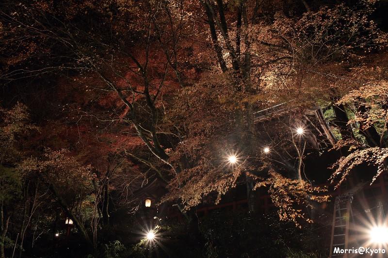 貴船燈籠祭 (11)