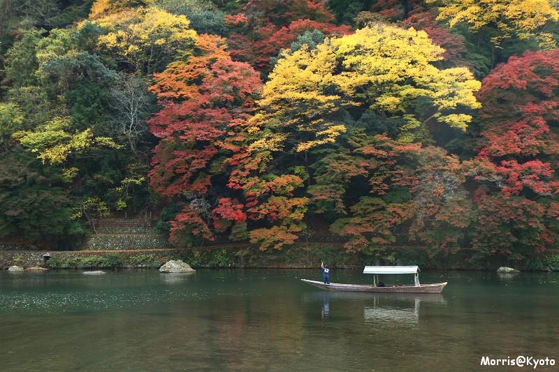 嵐山 (38)