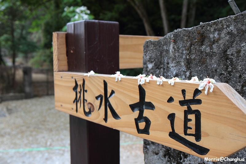2011油桐花季 挑水古道 (3)