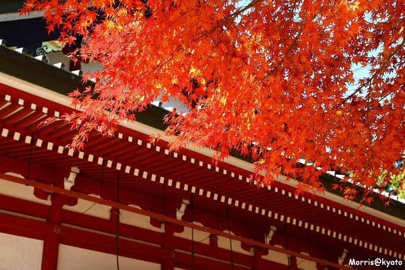 比叡山延曆寺 (69)