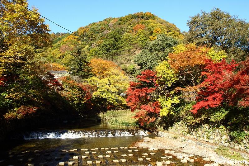 比叡山延曆寺 (3)
