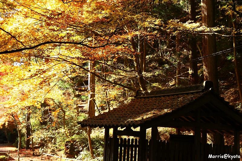 比叡山延曆寺 (42)