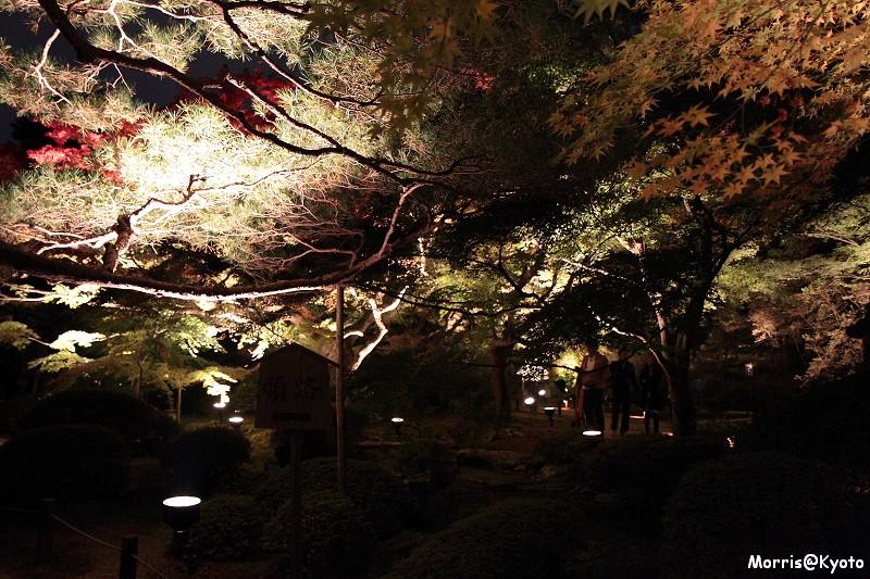 青蓮院門跡 (14)