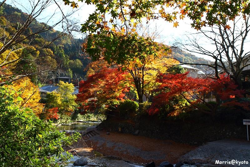 比叡山延曆寺 (132)