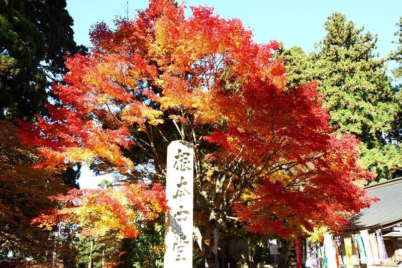 比叡山延曆寺 (81)
