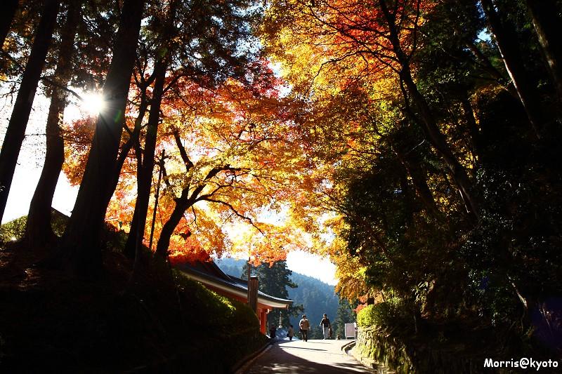 比叡山延曆寺 (77)