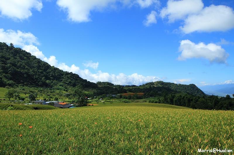 赤科山 (49)