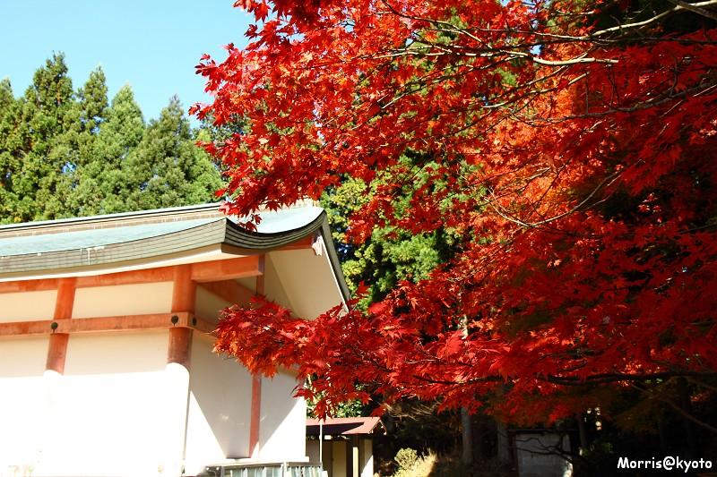 比叡山延曆寺 (32)