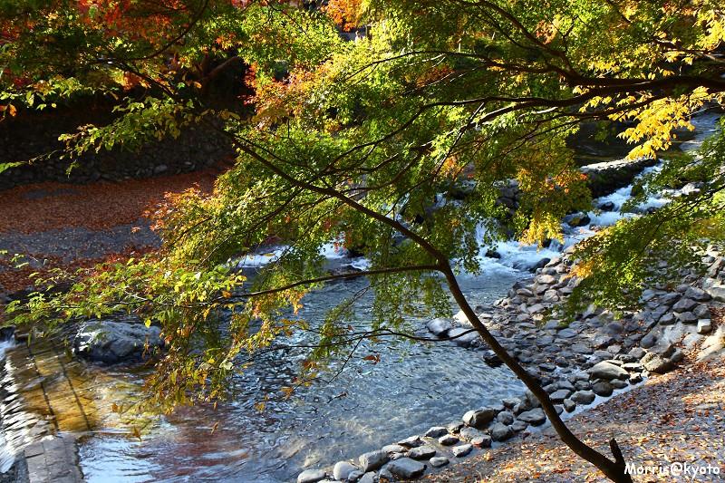 比叡山延曆寺 (133)