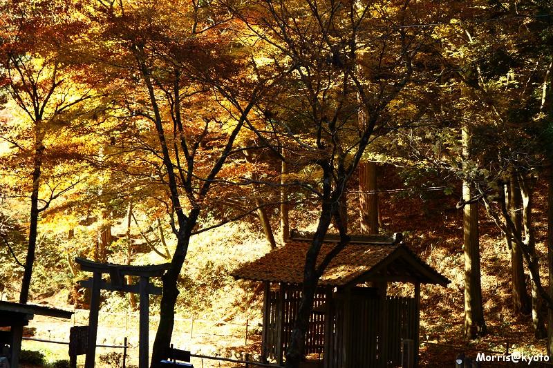 比叡山延曆寺 (40)