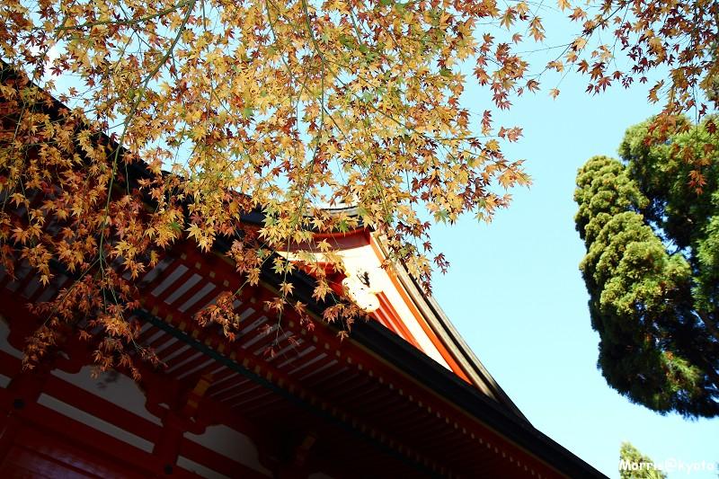 比叡山延曆寺 (39)