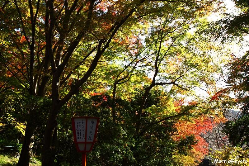 比叡山延曆寺 (126)