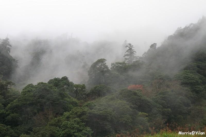 宜蘭太平山 (21)