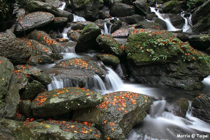 雲森瀑布 楓紅楓落 (3)