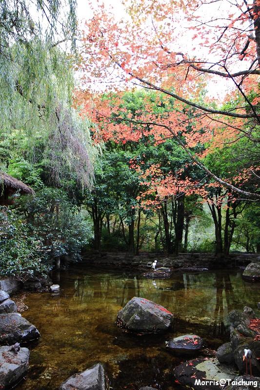 2011 武陵農場 (22)