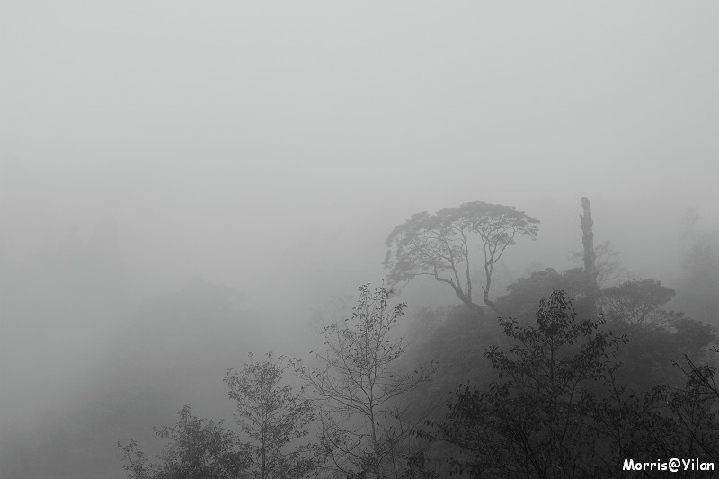 宜蘭太平山 (17)