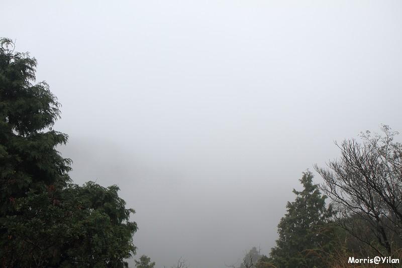 翠峰湖環山步道 (10)