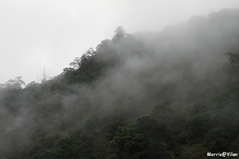 宜蘭太平山 (22)
