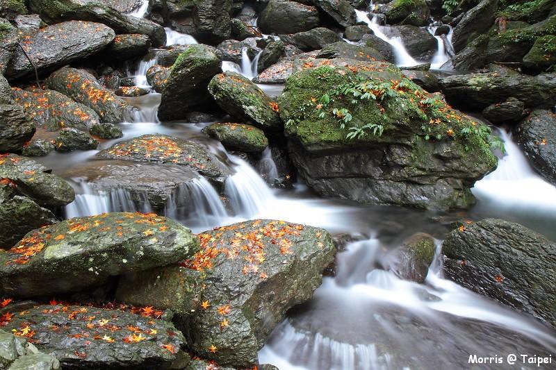 雲森瀑布 楓紅楓落 (5)
