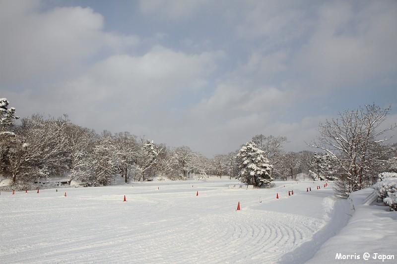 大沼公園 (4)