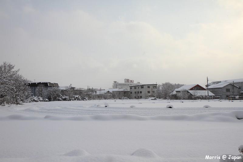 大沼公園 (2)