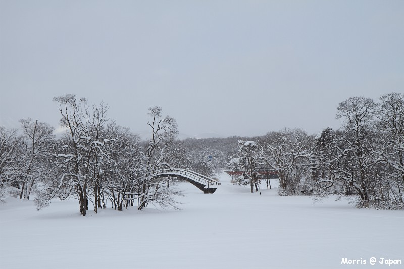 大沼公園 (53)