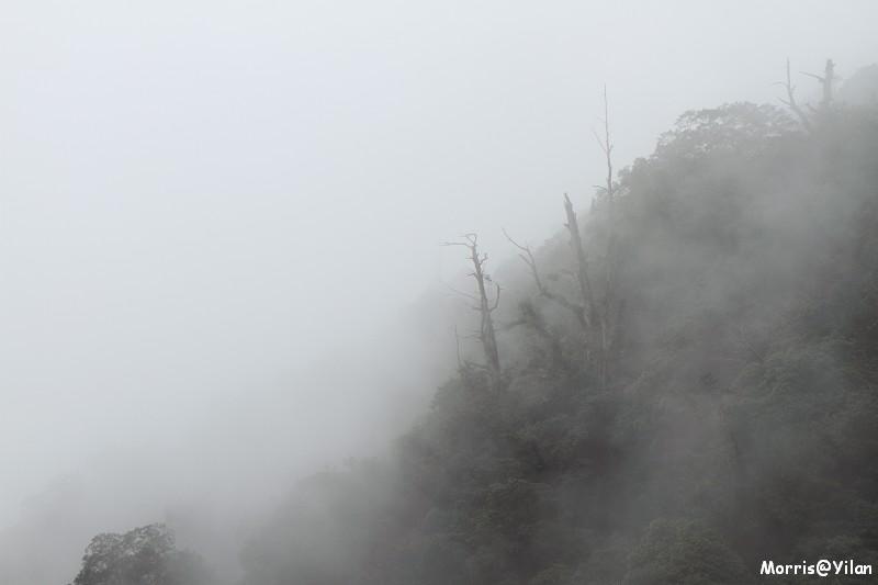 宜蘭太平山 (20)