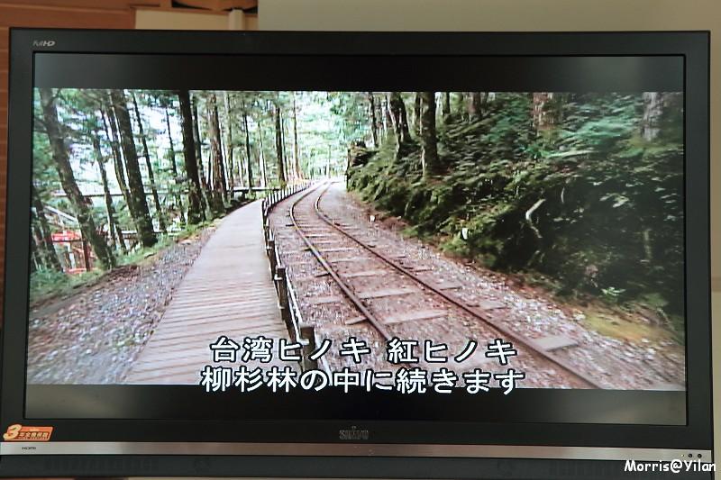 太平山蹦蹦車 (5)